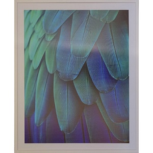 Feathers Blue + Turquoise artwork